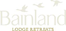 Bainland Logo light_web-01