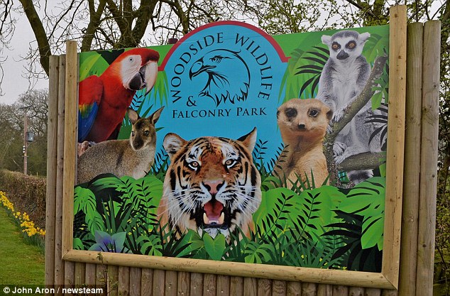 woodside wildlife & falconry park